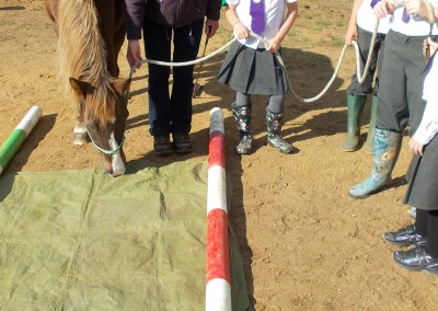 Learners with pony, Bodster-CIC